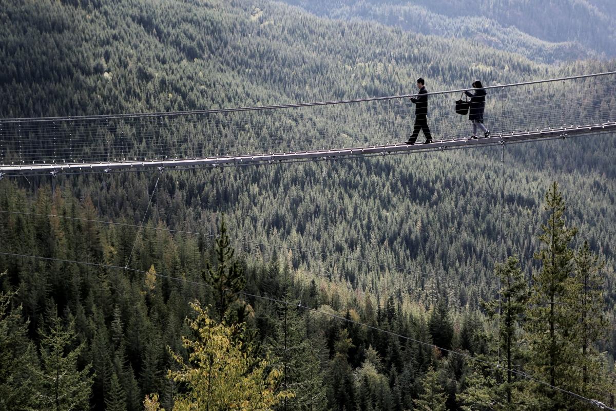 http___www.lifeofpix.com_wp-content_uploads_2016_11_Life-of-Pix-free-stock-peoples-bridge-forest-LEEROY